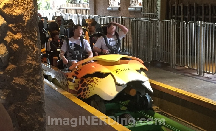 Image Result For Busch Gardens Cheetah Hunt S D