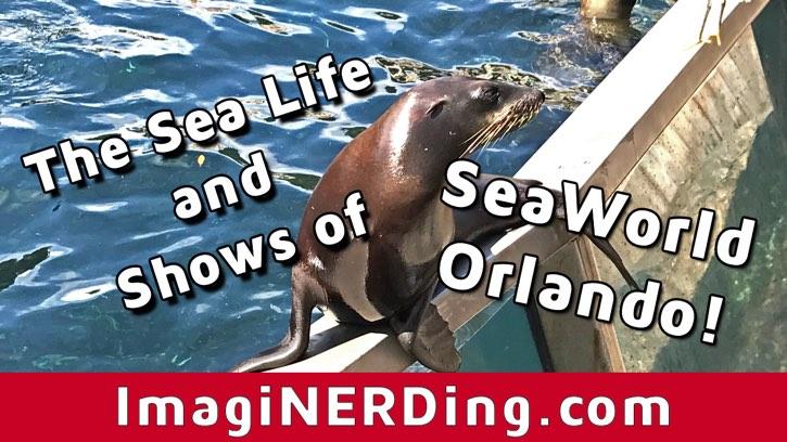 seaward orlando shows and animals